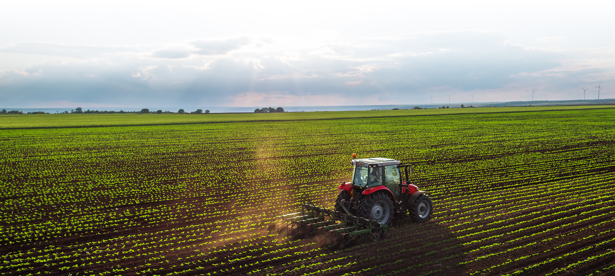 drydene-agricultural-solutions-02